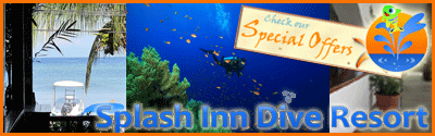 Splash Inn Roatan