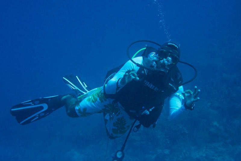 Roatan dive shops and resorts roatan diving - Roatan dive sites ...